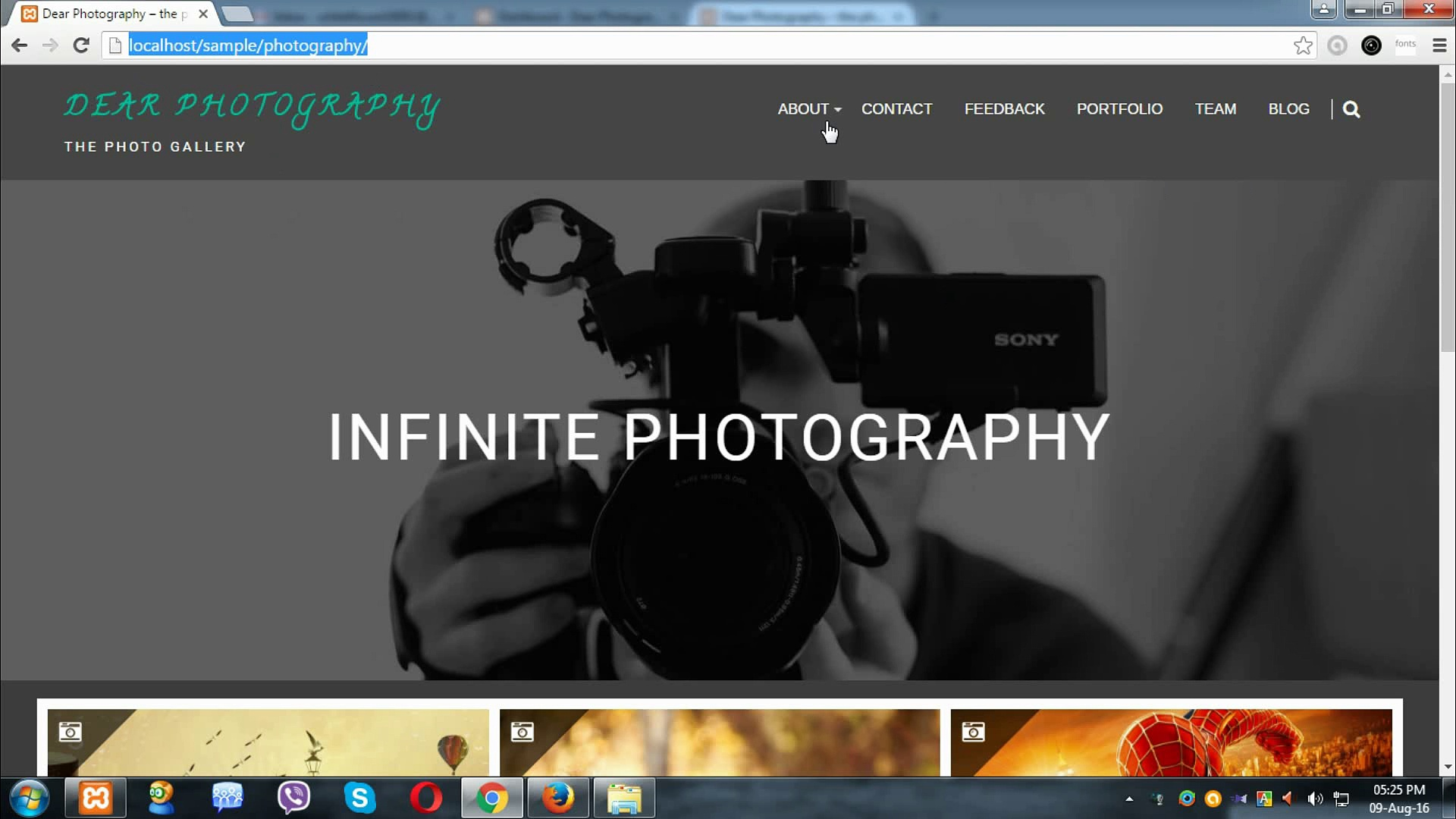 Responsive WordPress Theme for Photographer, 5