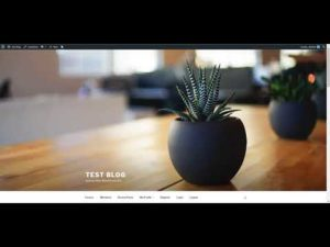 Youtubomatic update – import video captions to generated post's content
