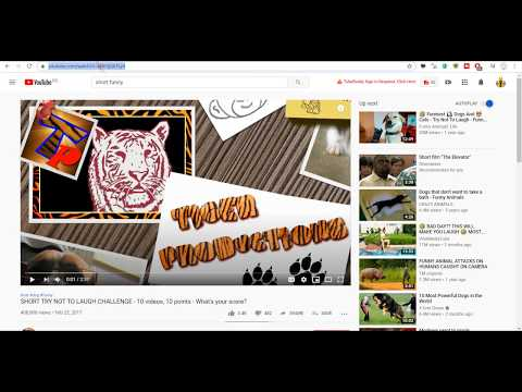 How to simply embed a video to your WordPress post and automatically publish it to YouTube?