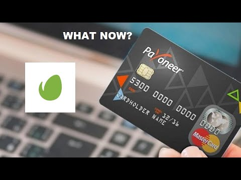Payoneer cards frozen – what to do next if you are an Envato author?
