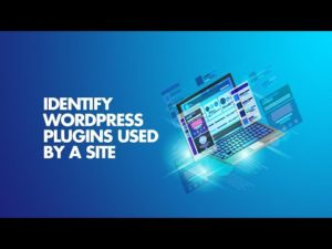 How to Find WordPress Plugins and Theme from Web Site HTML Source Code?