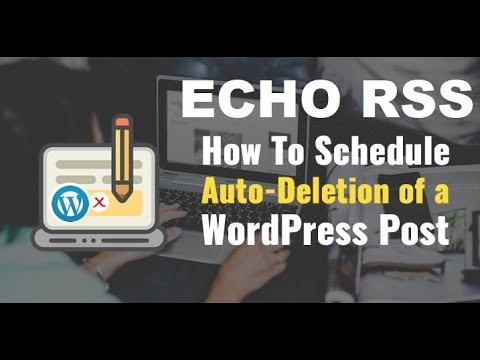 How to automatically delete posts created by the Echo RSS Feed Post Generator plugin?