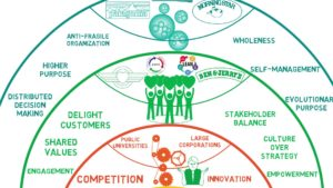Lean and Agile Adoption with the Laloux Culture Model