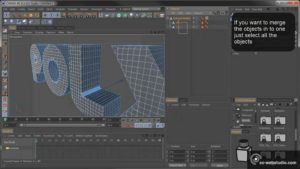 Extrude Nurbs to Editable Polygons Cinema 4D