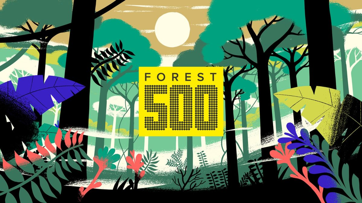 Forest 500