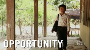What We Do – Heifer International