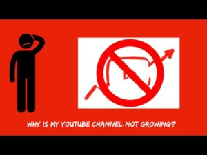 Why my YouTube Channel is Not Growing Faster? Let me explain…