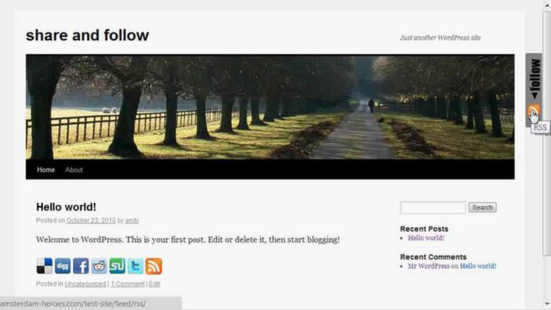 Overview of how Share and Follow WordPress Plugin works