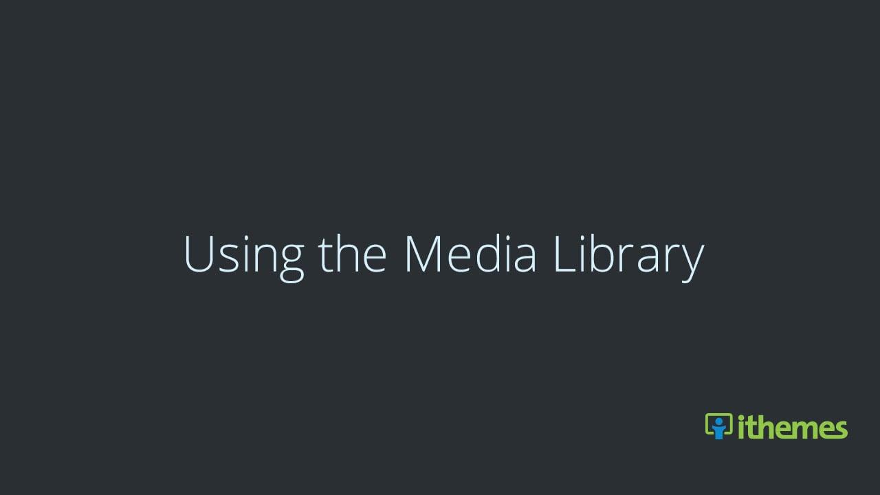 Using the WordPress Media Library