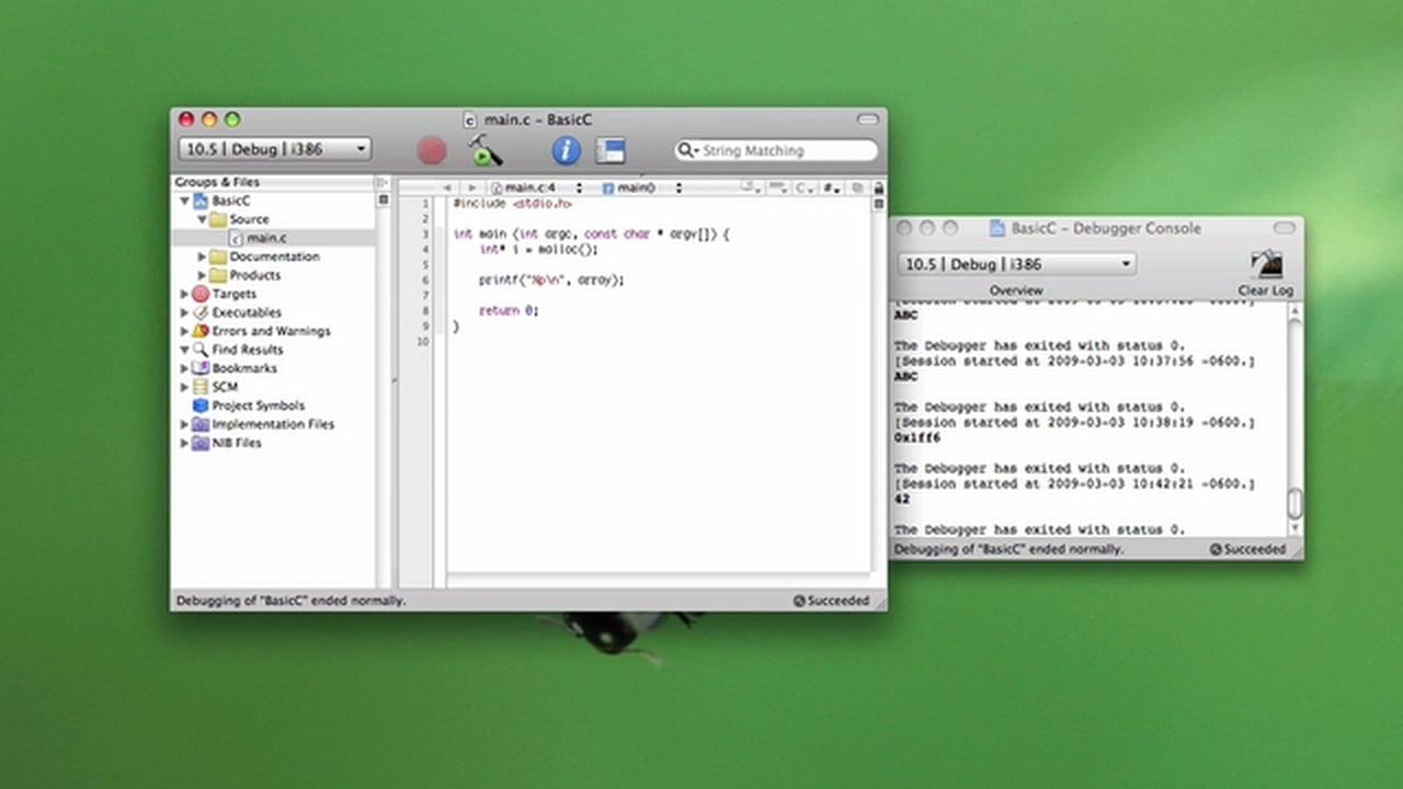 Basic C Programming