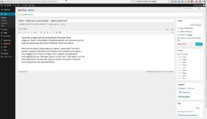 WordPress Plugin: Hints – Tutorial Video