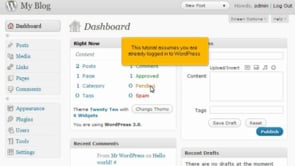How to manage users in WordPress