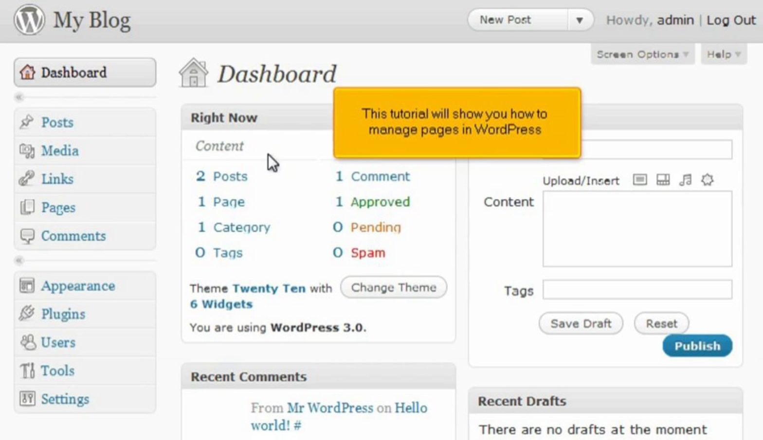 How to manage pages in WordPress