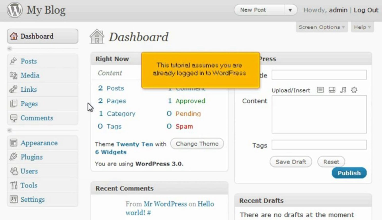 How to write a comment in WordPress
