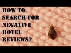 How to search and import negative hotel reviews on a specific subject (example: bug, roach)