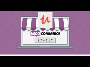 Learnomatic Udemy Affiliate plugin tutorial: create WooCommerce products from posted online courses
