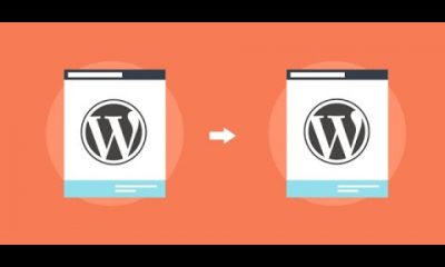 Demo My WordPress update: clone the main website of the multisite install