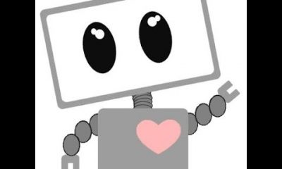 """Nice Bot"" update for Crawlomatic and Echo RSS Feed Importer plugins: respects the robots meta tags"