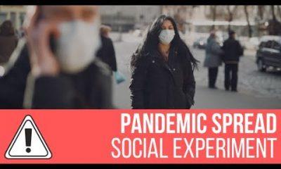 Pandemic Spread Simulation – Social Experiment WordPress Plugin